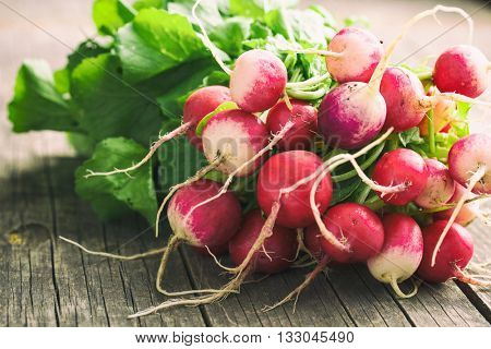 Bunch of fresh radishes. Fresh radishes on old wooden table.