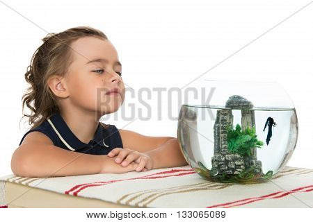 Cute little girl watching the fish that swim in a fishbowl - Isolated on white background
