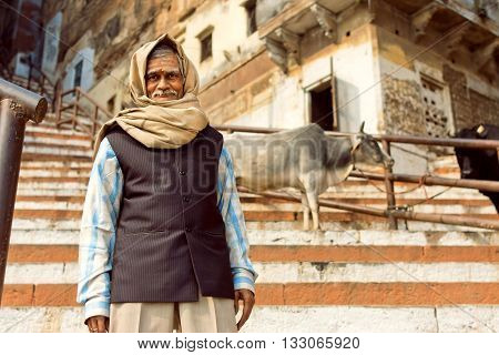 VARANASI, INDIA - JAN 1, 2016: Senior with smiley face and head scarf walking on steep of the ancient city with cows around on January 1, 2016. Varanasi urban agglomeration had a popul. of 1435113.