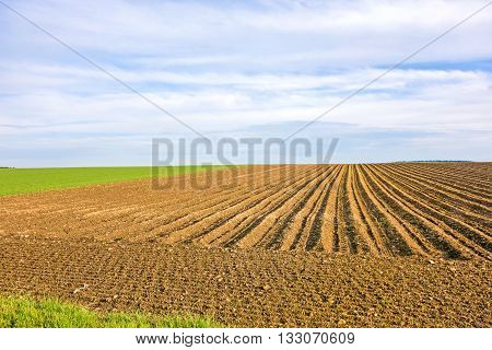 Farmland - brown field blue sky rural landscape