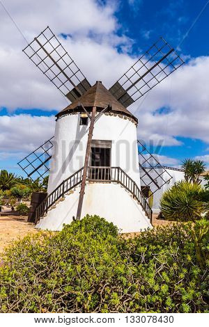 Windmill In Molino de Antigua - Antigua Fuerteventura Canary Islands Spain