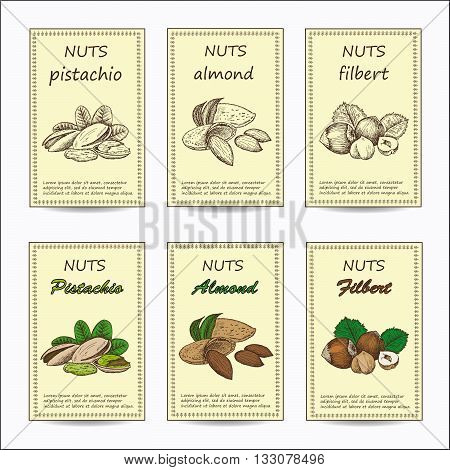 Hand drawn nuts sale tag banners. Vintage color design with almond, pistachio, filbert illustration. Set of vector sketches.