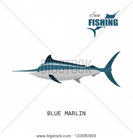 Fish: blue marlin. Sea fishing. Vector illustration