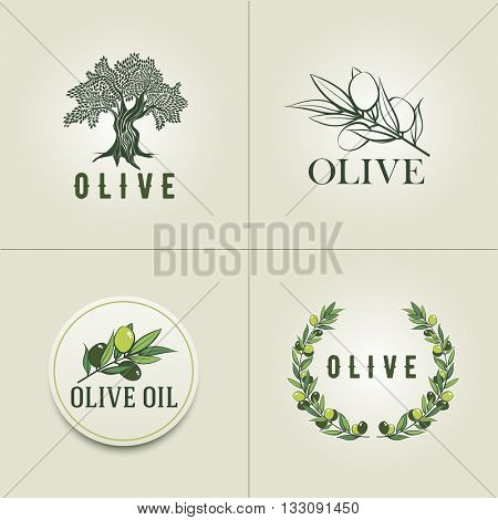 Various Olive logo design templates. Olive branch, olive tree and olive branch wreath illustration.