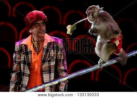 ST. PETERSBURG, RUSSIA - JUNE 2, 2016: Kamal Jabraylov and trained monkey in the dress rehearsal of the Show of Water, Fire, And Light in the Ciniselli circus. This show first time arrived in the city