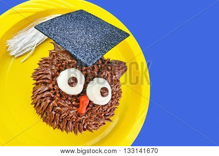 A chocolate owl cupcake wears a graduation cap decoration and looks to the side. Background is a solid royal blue color.