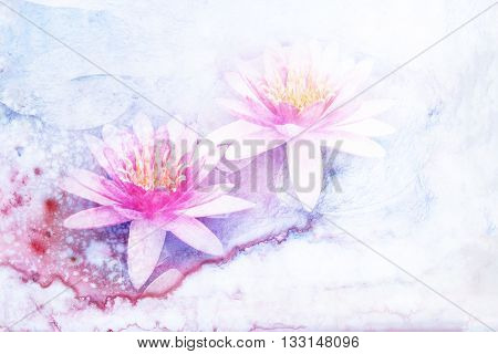 Abstract watercolor illustration of blossom lotus flower. Watercolor painting. Floral watercolor illustration.