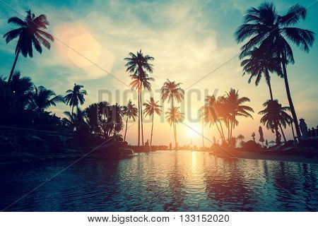 Soft sunset on a palm tree tropical sea beach.