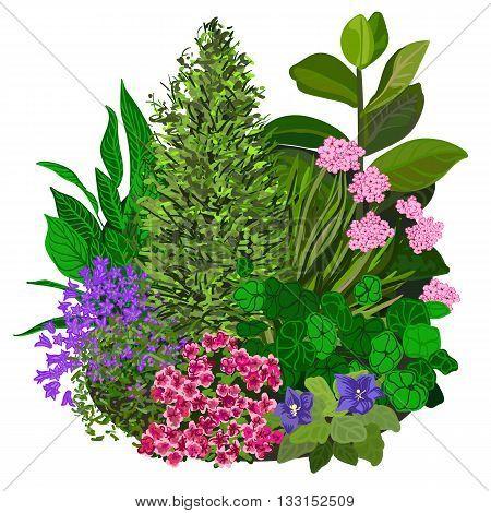 Garden landscapes summer and spring flower bed. Vector illustrations