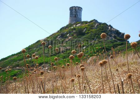 A Tower overlooking the hills of Corsica Island, France