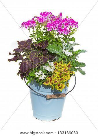Serveral Garden Flowers In A Enamel Bucket.