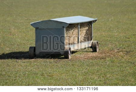 A Double Sided Sheep Feeder Hay Rack on Wheels.