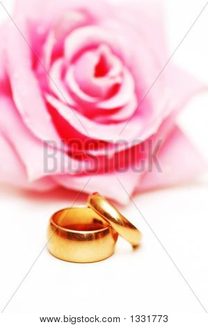 Two Wedding Rings And Pink Rose At The Background