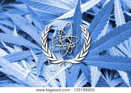 Flag Of The International Atomic Energy Agency (iaea), On Cannabis Background
