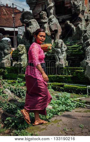 UBUD, INDONESIA - MARCH 01: Balinese woman in traditional clothes making offerings in the temple Ubud Bali Indonesia on March 01 2016