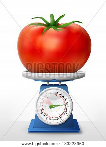 Tomato fruit on scale pan. Weighing tomato with leaf on scales. Qualitative vector illustration about agriculture, vegetables, cooking, health food, gastronomy, olericulture, etc