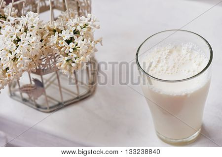 A glass of milk and bowl of insipidity. White background