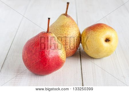 Forelle Pears an heirloom variety of Pyrus communis the European pear or common pear
