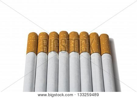 Cigarettes in a row on an isolated white background