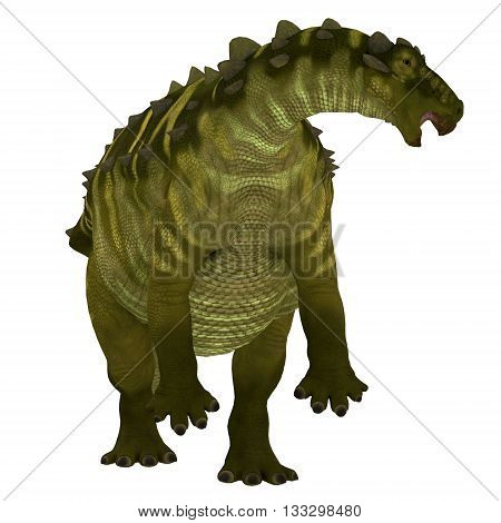 Talarurus Dinosaur over White 3D Illustration - Talarurus was a herbivorous armored dinosaur that lived in the Cretaceous Period of Mongolia.