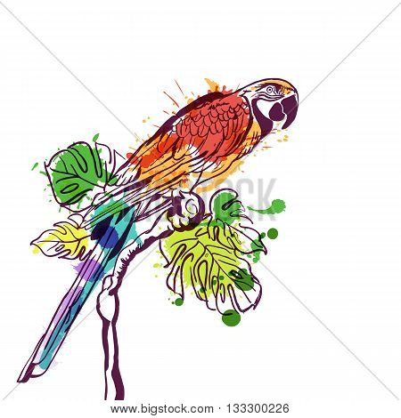 Vector Hand Drawn Watercolor Illustration Of Tropical Parrot Bird. Isolated Colorful Parrot On Branc
