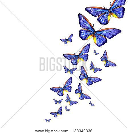 watercolor flying blue butterflies on white background