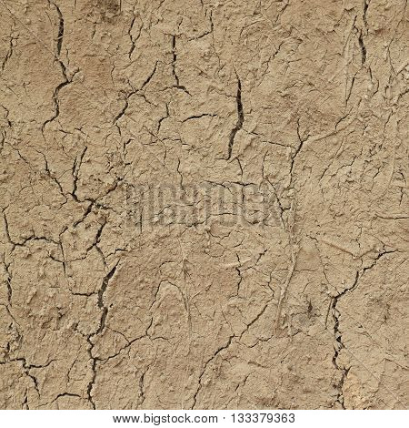 The ground is dry drought cracked ground