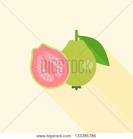 Guava with cross section illustration, Guava icon with long shadow, Whole guava and Half guava fruit flat design vector
