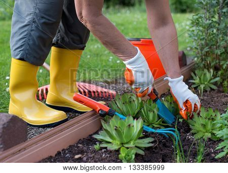 Woman Working In Garden With Shovel And Rake