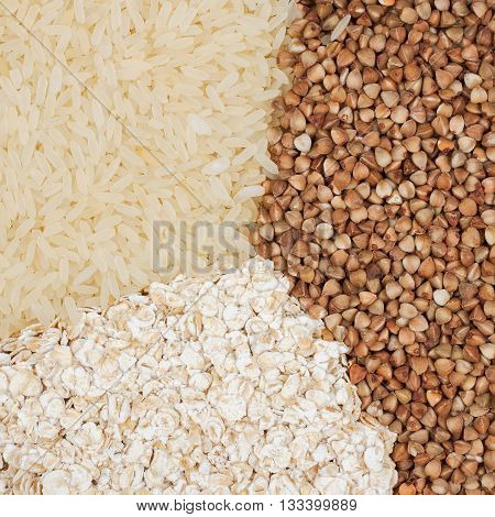 Rice, buckwheat, oatmeal close-up. The concept of a healthy diet, complex carbohydrates, healthy lifestyle