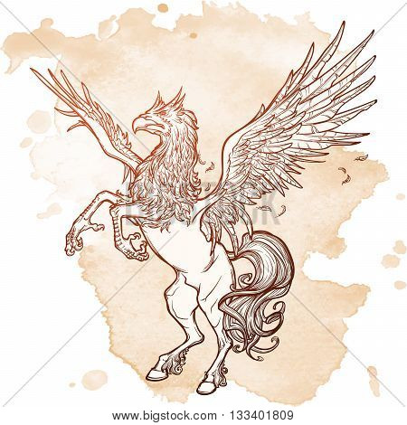 Hippogriff greek mythological creature.. Legendary beast concept drawing. Heraldry figure. Vintage tattoo design. Sketch on a grunge background. EPS10 vector illustration.