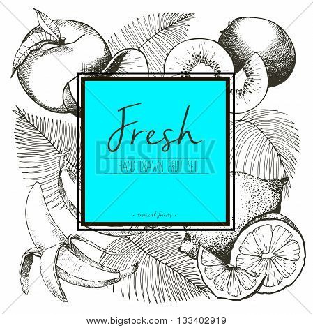 Vector border illustration of fresh tropical fruits with palm leaves. Hand drawn vintage set of vegetarian tasty organic food with ocean blue square text template.