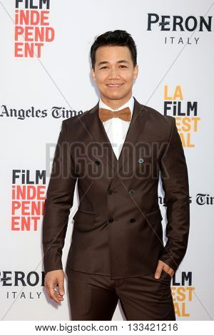 LOS ANGELES - JUN 7:  Shannon Kook at the 2016 Los Angeles Film Festival - The Conjuring 2 Premiere at TCL Chinese Theater IMAX on June 7, 2016 in Los Angeles, CA