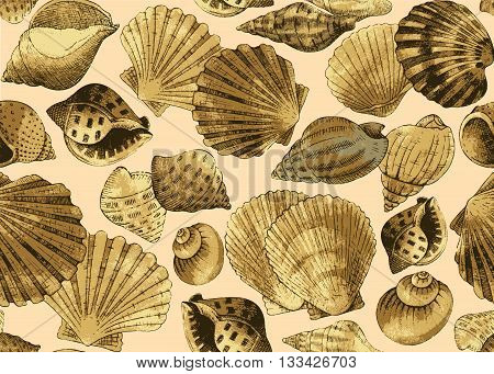 Seashells. Seamless background on a light background