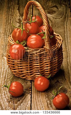 Wicker Basket Full of Perfect Ripe Cherry Tomatoes with Stems closeup on Rustic Wooden background. Retro Styled