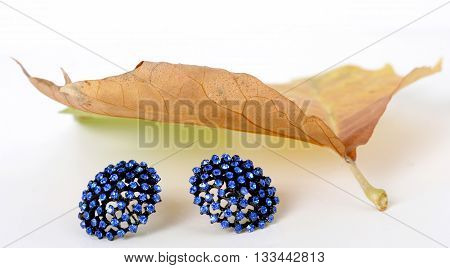picture of a blue earrings under the shadow of a autumn leaf