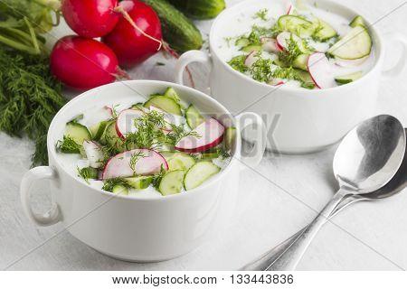 Traditional Russian Summer Cold Soup - Okroshka With Garden Radish, Cucumber, Kefir (yogurt), Fennel