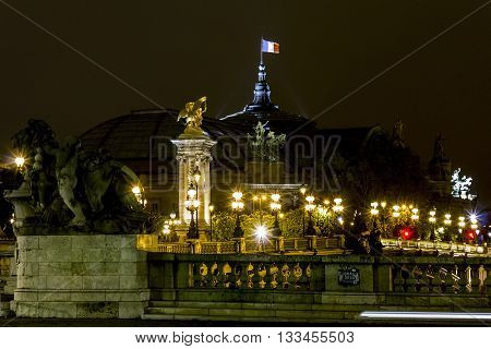 PARIS, FRANCE - MAY 12, 2013: This is view of the Grand Palace and the bridge of Alexander III in the night.