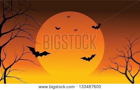 Bat and full sun at the afternoon Halloween scenery orange backgrounds