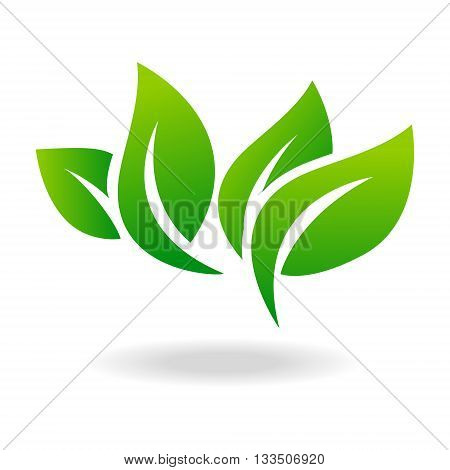Leaf logo shape icon and green leaf logo emblem. Ecology green leaf logo organic environment, tree leaf logotype.