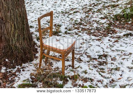 The brown chair forgotten outdoors at a tree under a snow layer