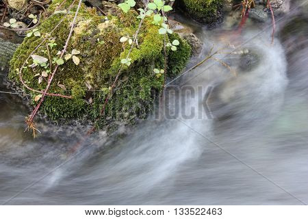 Forest stream running over mossy rocks with milky like water texture