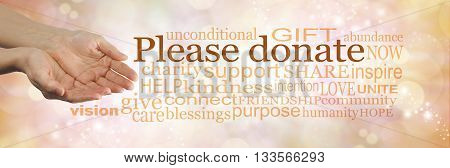 Please donate to our cause - campaign banner with female cupped hands on left and a word cloud surrounding 'PLEASE DONATE' on a peach bokeh sparkling background
