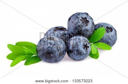Fresh blueberry, Organic blueberry isolated on white background.