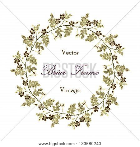Vector round frame with the briar. Vector delicate eglantine frame. Vintage template card. Save the date vector circular illustration.