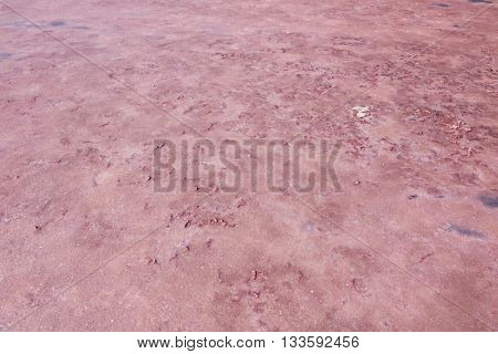 Closeup of evaporated salt lake compacted surface at Coorong National Park. The pink coloration caused by algae called Dunaliella salina, South Australia