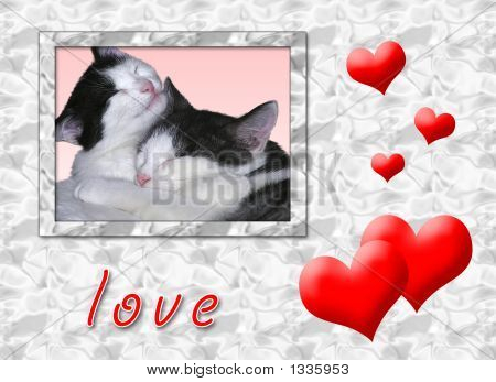 a card of two sweet and loved cats poster