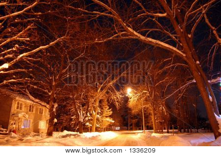 Snow Cap Night 011