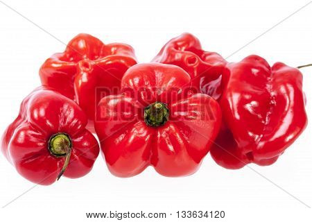 some vegetable of red chili pepper habanero isolated on white background.