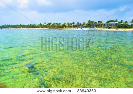 Coral Reef and clear shallow seawater taken in Key West, FL